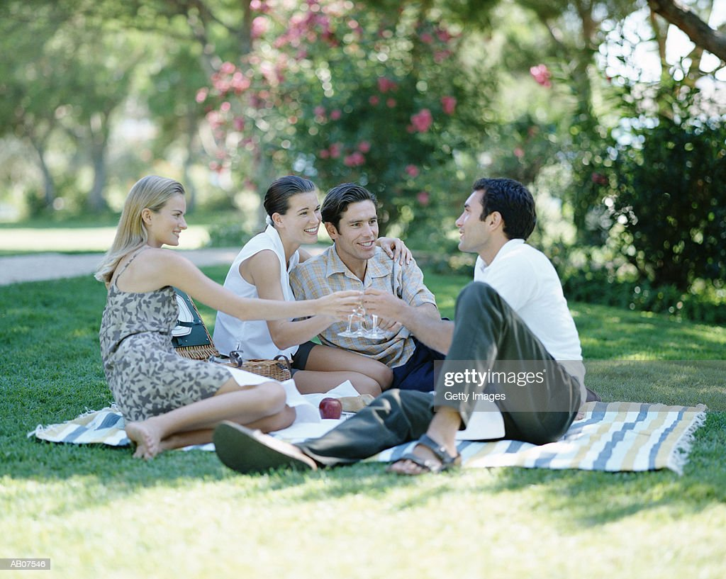 Two young couples having picnic in park : Stock Photo
