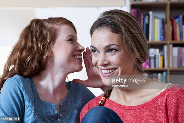 Two young female friends at home exchanging confidences