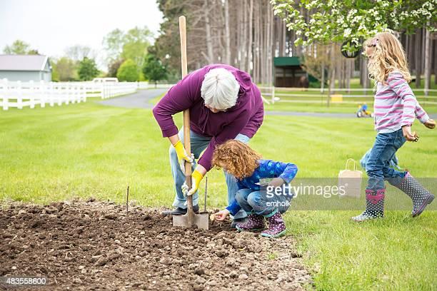 Due giovani ragazze e nonna Piantare un giardino