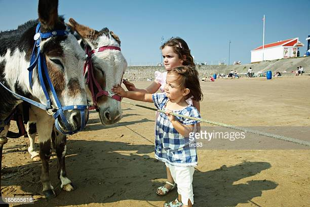 Two young girls petting donkeys on the beach