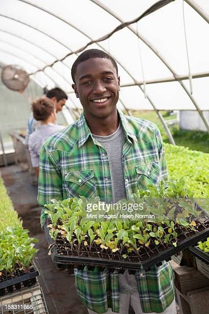 Two young men and a woman working in a large greenhouse, tending and sorting trays of seedlings.