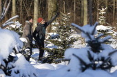 Two young men look at a Christmas tree in a plantation in a forest on December 8 2012 in Fischbach Germany Forestry officials in the state of Saxony...