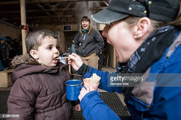TORONTO ON MARCH 16 Twoyearold Alaa Alnajar gets a taste of maple syrup as Syrian refugee kids from Thornwood Public School in Mississauga and...