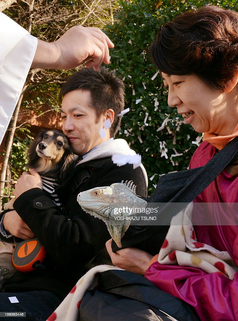 A two-year-old green iguana, held by his owner (R) is purified by a Shinto priest at the Ichigaya Kamegaoka-Hachiman shrine in Tokyo on January 13, 2013. Some 500 pet owners visited the shrine to celebrate the New Year and pray for the health and happiness of their animals. AFP PHOTO / Yoshikazu TSUNO