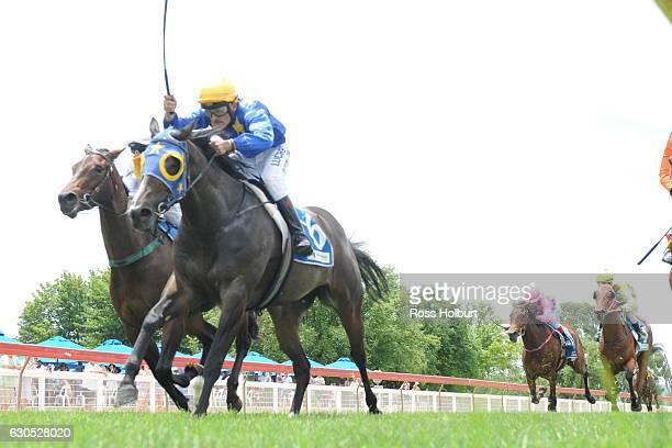 Tycoon ridden by Robert Beattie wins Bill McGrath Engineering FM Maiden Plate at Wodonga Racecourse on December 24 2016 in Wodonga Australia