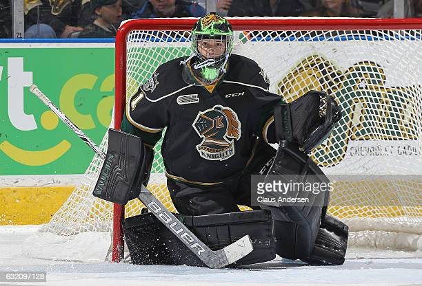 Tyler Parsons of the London Knights gets set to face a shot against the Sarnia Sting during an OHL game at Budweiser Gardens on January 18 2017 in...