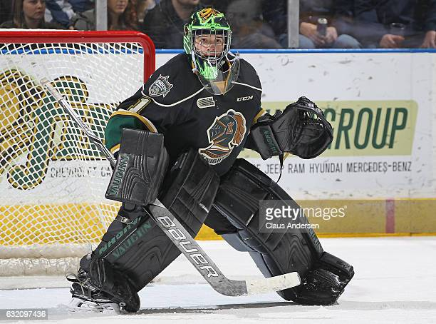 Tyler Parsons of the London Knights looks to face a shot against the Sarnia Sting during an OHL game at Budweiser Gardens on January 18 2017 in...