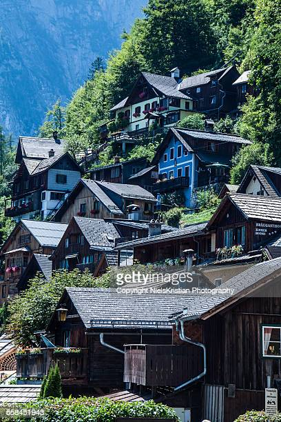 Typical Austrian Mountain villas near Hallstatt