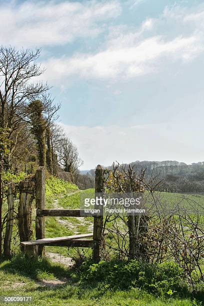 Typical English country stile