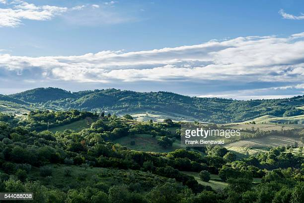 Typical green Tuscany landscape with hills olive trees grain fields and blue cloudy sky