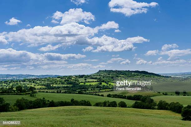 Typical green Tuscany landscape with hills trees grain fields and blue cloudy sky