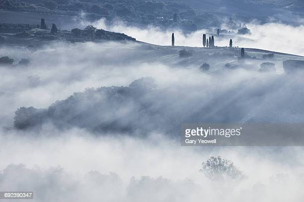Typical Italian landscape with mist and trees