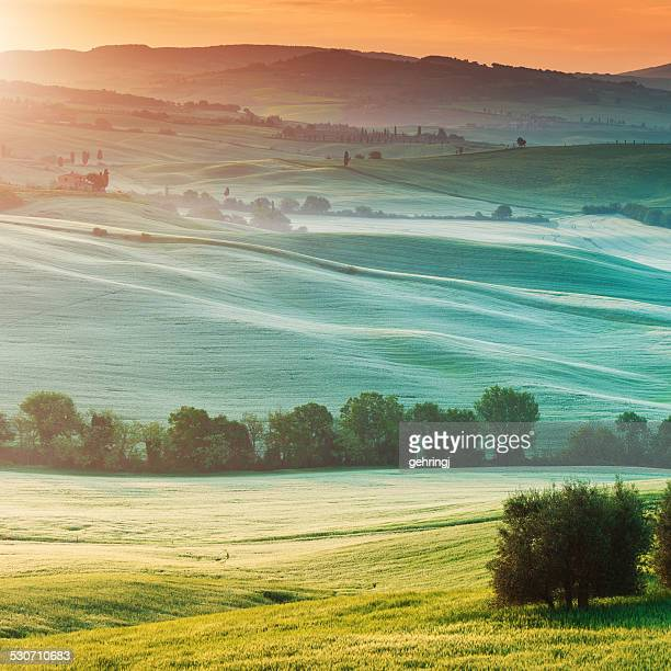 Typical landscape from Tuscany