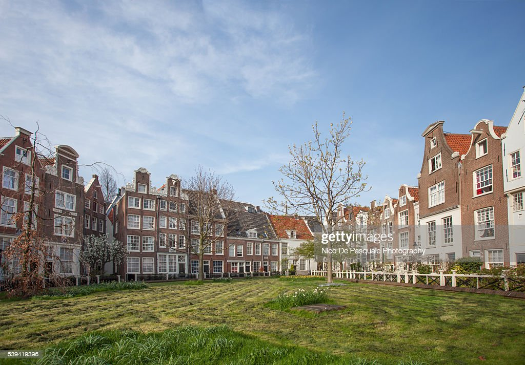 Typical Row Houses in Amsterdam
