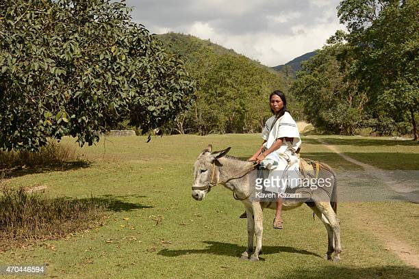 A typically dressed young Arhuaco man sits on a mule heading towards the walled village on January 23 2015 in Nabusimake Colombia The Arhuaco men...
