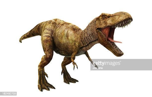 ティラノサウルスレックス