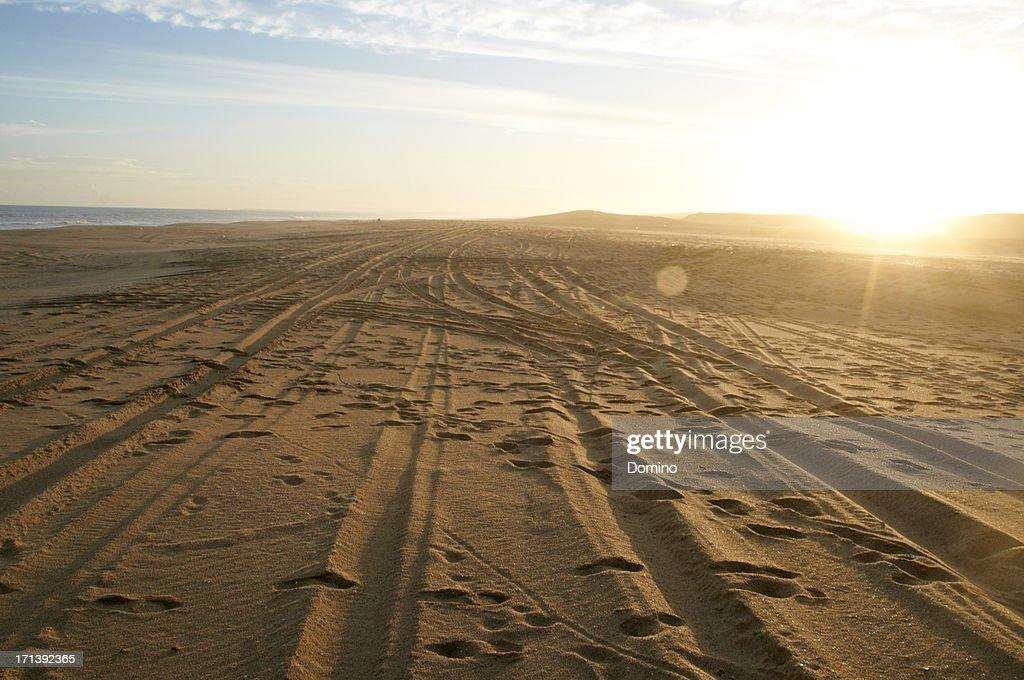 Tyre tracks in sand on a beach, Uruguay : Stock Photo