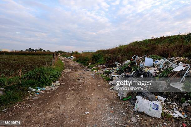Tyres plastic and burnt toxic waste are left strewn on the sides of an agriculture field near Orta di Atella southern Italy on November 14 2013 Orta...