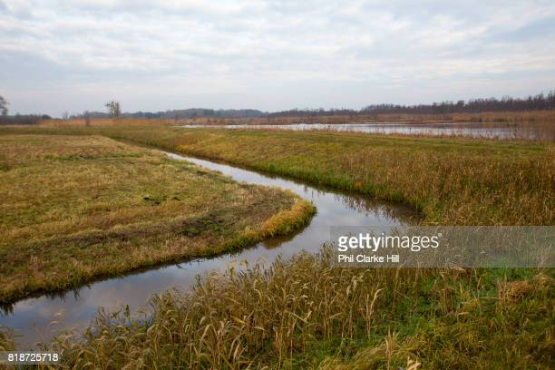 Uckermarkische Seen Natural park part of the The Feldberg Lake District Nature Park containing large lakes kettle bogs and an abundance of plant and...