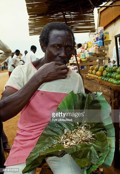 Uganda Jinja Man eating live white flying ants a common snack