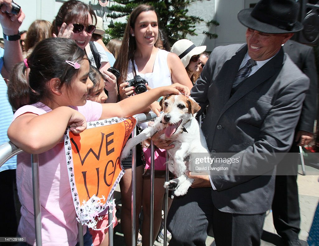 Uggie, the dog from 'The Artist' which won an Academy Award for Best Picture being held by owner/trainer Omar von Muller, is immortalized with a hand and paw print ceremony at Grauman's Chinese Theatre on June 25, 2012 in Hollywood, California.