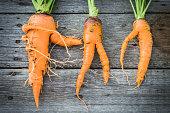 Trendy ugly organic carrot from home garden on barn wood table, australian grown