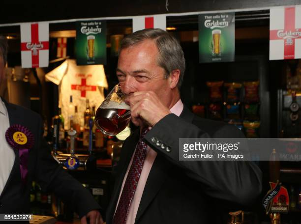 Ukip party leader Nigel Farage enjoys a pint in the Hoy and Helmet Pub in South Benfleet Essex as his party make gains across the country following...