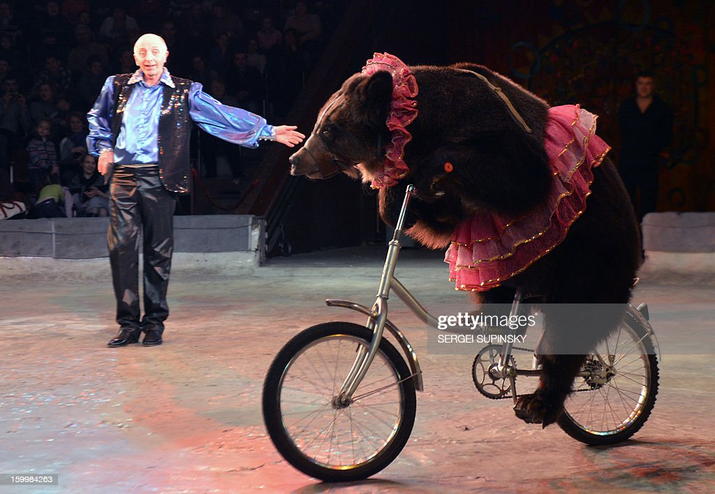 A Ukrainian National Circus artist performs with a bear during presentation of the new programme in Kiev on January 24, 2013.