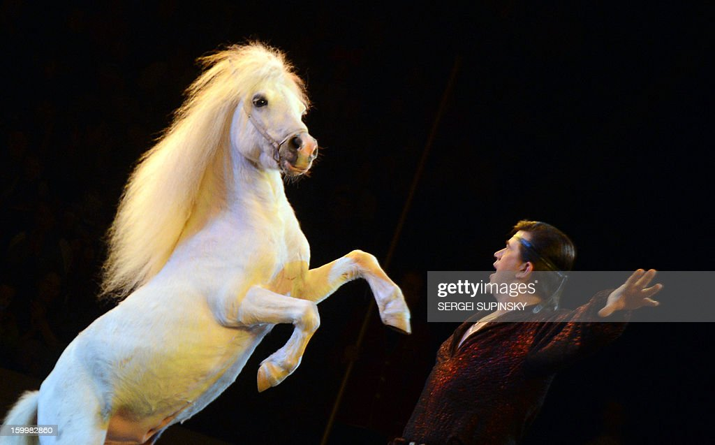 A Ukrainian National Circus artist performs with a horse during presentation of the new programme in Kiev on January 24, 2013. AFP PHOTO/ SERGEI SUPINSKY