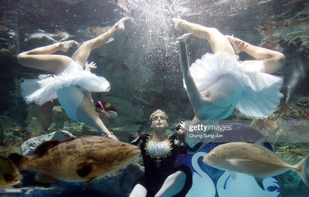 Ukrainian synchronized swimming team members perform an aquatic ballet in a fish tank at an Aquarium on August 7, 2007 in Seoul, South Korea.