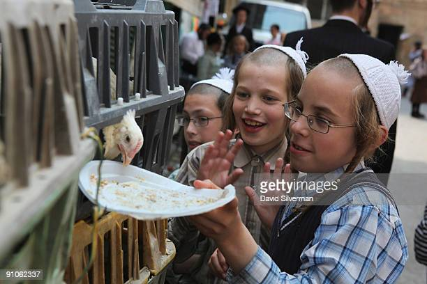 UltraOrthodox Jewish boys feed breadcrumbs to a chicken soon to find its fate in the 'kaparot' ceremony on September 23 2009 in the Mea Shearim...