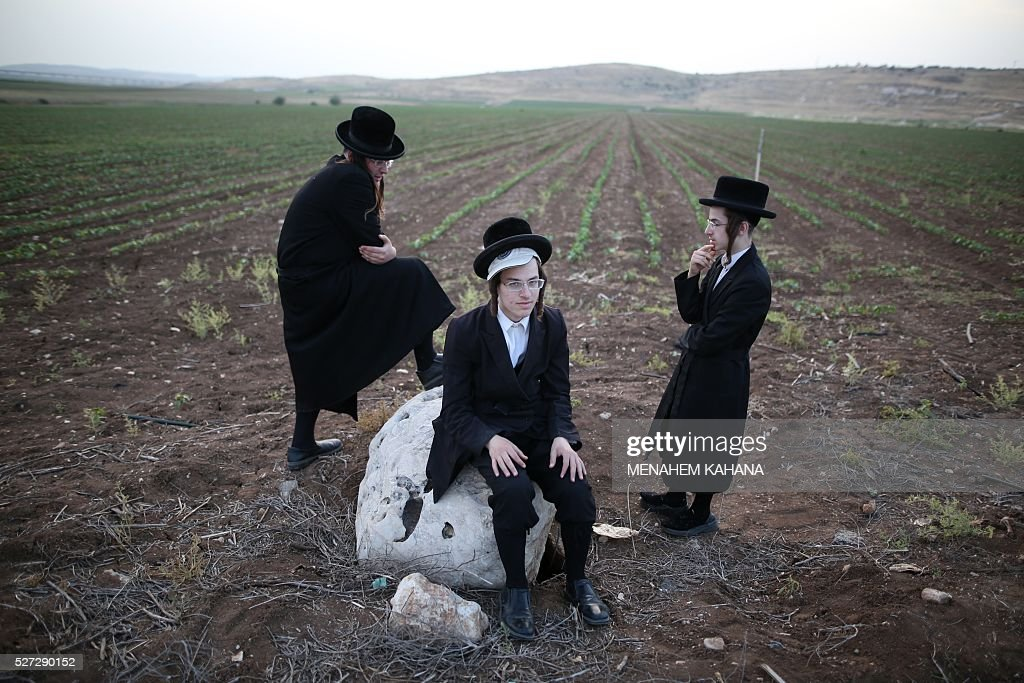 Ultra-Orthodox jews look on after harvesting wheat using hand sickles in a field near the Mevo Horon settlement in the Israeli occupied West Bank on May 2, 2016. The wheat will be stored for almost a year before being used to grind flour in order to make the Matzoth (unleavened bread) for the week-long Passover festival next year. Religious Jews throughout the world eat matzoth during the eight-day Pesach holiday (Passover), which commemorate the Israelites' exodus from Egypt some 3,500 years ago. Due to the haste with which the Jews left Egypt, the bread they had prepared for the journey did not have time to rise. To commemorate their ancestors' plight, religious Jews do not eat leavened food products throughout Passover. / AFP / MENAHEM