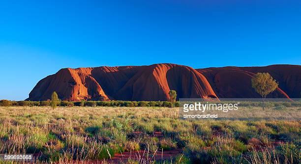 Uluru In The Morning Light