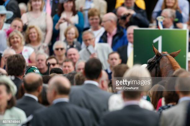 Ulysses after winning The Juddmonte International Stakes at York racecourse on August 23 2017 in York England