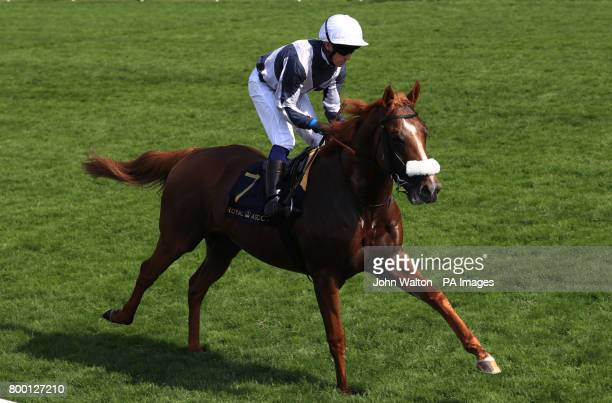 Ulysses ridden by jockey Jim Crowley goes to post before the Prince Of Wales's Stakes during day two of Royal Ascot