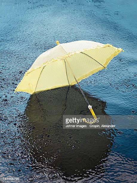 Umbrella floating on water, high angle view