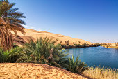 Umm el Ma (Mother of the Water) is about 800 meters long stretched lake in the Libyan part of the Sahara in the Fezzan Awbari. The oasis formed by the lake will be saved from numerous underground wate