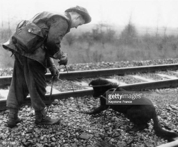 Un ingénieur militaire britannique utilise un chien afin de détecter les mines sur la voie ferrée en novembre 1944 en Allemagne