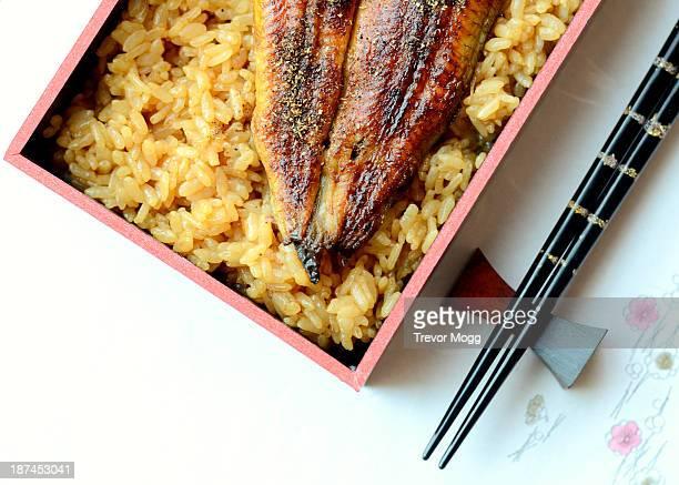Unagi don - Japanese dish