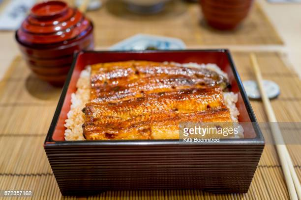 Unagi don or grilled eel rice, one of famous japanese food