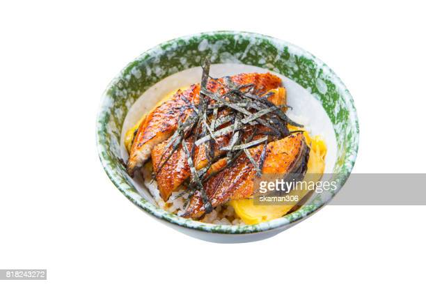 unagi don (sea eel )with japanese rice with ingredient