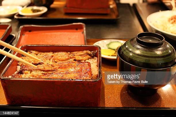 Unagi (eel)
