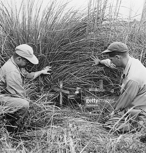 Uncared For Graves Of Americans In Japanese Prison Camp Philippine Islands An American soldier and a war correspondent push back the overgrown weeds...