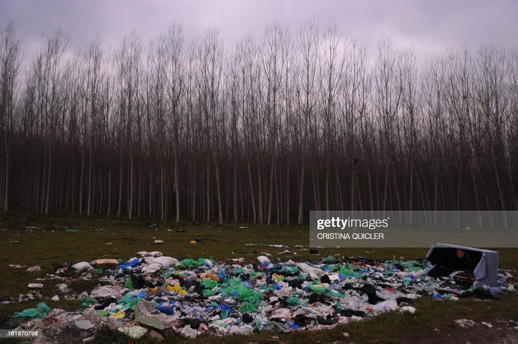 Uncollected rubbish is pictured in front of black poplar plantation in Fuente Vaqueros near Granada on February 17, 2013.