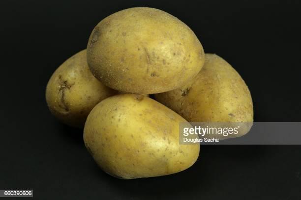 Uncooked Idaho Russet Burbank Potatoes (Solanum tuberosum)