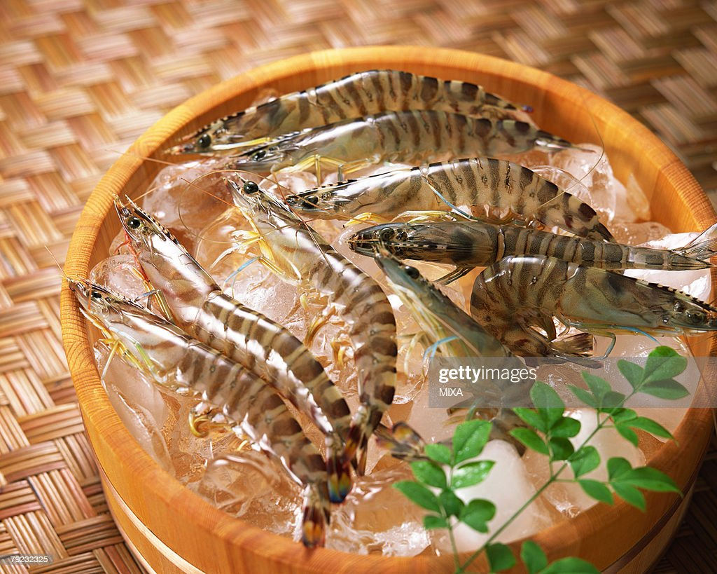 Uncooked tiger prawn : Stock Photo