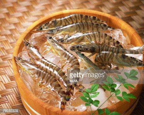 Uncooked tiger prawn : Stock Photo