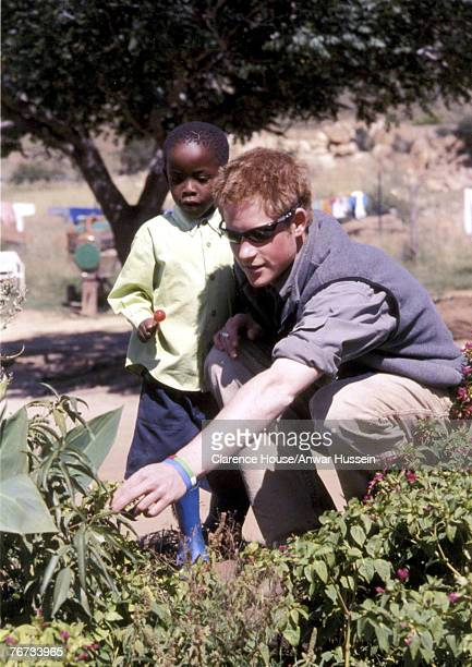 Undated Clarence House handout photo of Prince Harry with Mutsu at the MantsAfe Children's Home Mohales Hoek Lesotho Prince Harry has thanked the...