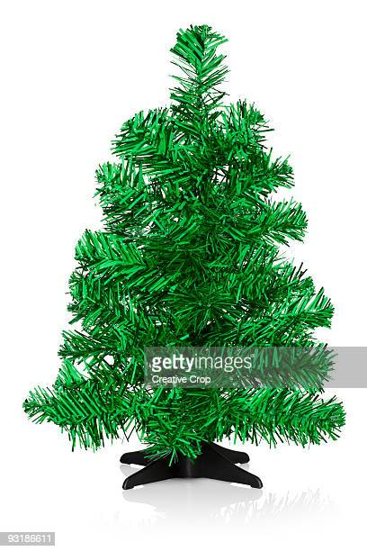 Undecorated small green Christmas tree