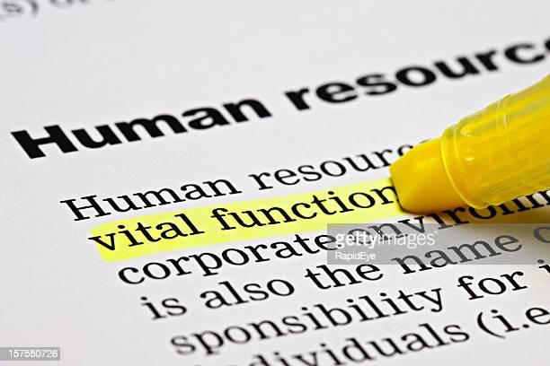 """Unter der Überschrift """"Kapitel resources','vital function'markiert ist"""